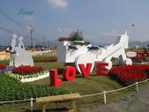 14-11-10新社花海:DSC_3848.jpg