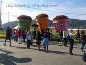 15-11-09新社花海:DSC_6634.jpg