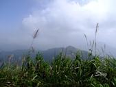 11-10-31馬拉邦山、后里月眉糖廠、后里千年大樟樹:DSCF7337.jpg
