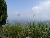 11-10-31馬拉邦山、后里月眉糖廠、后里千年大樟樹:DSCF7338.jpg