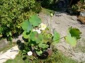 12-09-17~21 第三次環島:將園