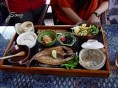 13-03-11 后里 星月大地:竹莢魚