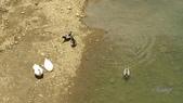 14-05-12杉林溪、斗六雅聞峇里海岸觀光工廠:DSC_2471.jpg