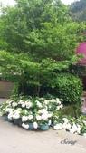 14-05-12杉林溪、斗六雅聞峇里海岸觀光工廠:DSC_2532.jpg