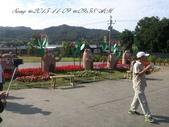 15-11-09新社花海:DSC_6668.jpg