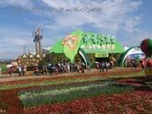 15-11-09新社花海:DSC_6649.jpg