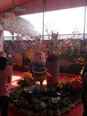 14-11-10新社花海:DSC_3795.jpg