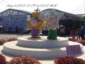 15-11-09新社花海:DSC_6685.jpg