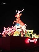14-02-21臺灣燈會在南投&臺中燈會的主燈:DSC_2131.jpg