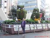 20141030-1103日本東京自由行-4:20141030-1103日本東京自由行0623.jpg