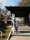 20141030-1103日本東京自由行-4:20141030-1103日本東京自由行0665.jpg