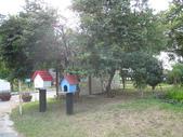 2008.10.25 桃園河岸森林:IMG_3194