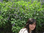 2008.06.21~23 北海岸:IMG_1601.jpg