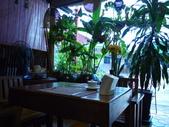 2011.04.08 in柬埔寨-吳哥窟:02-001-吳哥窟-guest  house-sam拍攝.JPG