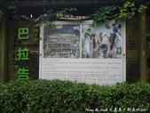 20170130 馬太鞍濕地:馬太鞍濕地-11.jpg