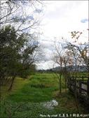 20170130 馬太鞍濕地:馬太鞍濕地-19.jpg