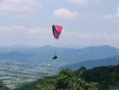 2014.08.03 南投虎頭山飛行傘:P1190523.JPG