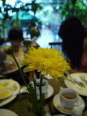2011.04.08 in柬埔寨-吳哥窟:02-003-吳哥窟-guest  house-sam拍攝.JPG