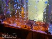 20160614 桀壽司日本料理:桀壽司-15.jpg