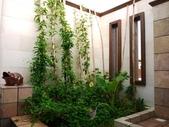 2010.09.16 in 馬來西亞:028-1禮晶海上VILLA-室內造景.jpg