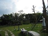 2009.06.03 紙箱王國 (東東芋圓):IMG_5251.JPG