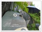 2015.09.06 大里喬城站龍貓:龍貓-05.jpg