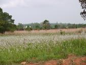 2011.04.04 柬埔寨-西哈努克:03-005-西哈努克隨拍.JPG