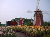 2012.04.04-3 中社觀光花市:P1150616.jpg