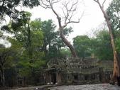 2011.04.09 in柬埔寨-吳哥窟:01-005-吳哥窟-塔普倫寺.JPG