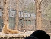 2012.02.24 韓國 Day2:02-070-by eva.JPG