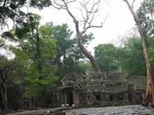 2011.04.09 in柬埔寨-吳哥窟:01-006-吳哥窟-塔普倫寺.JPG