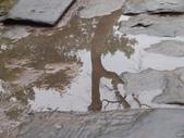 2011.04.09 in柬埔寨-吳哥窟:01-008-吳哥窟-塔普倫寺.JPG