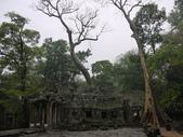 2011.04.09 in柬埔寨-吳哥窟:01-009-吳哥窟-塔普倫寺.JPG