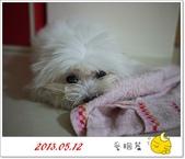 2013.12.31 β回顧篇:1愛睏篇.jpg