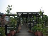 2008.05.24 宜蘭葫堤園:IMG_1332.jpg