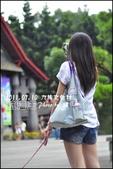2011.07.10 九族文化村-航海王:ONE PICEC-06.jpg