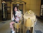 2009.06.03 紙箱王國 (東東芋圓):IMG_5223.JPG