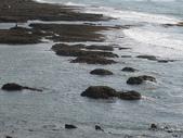 2008.06.21~23 北海岸:IMG_1652.jpg