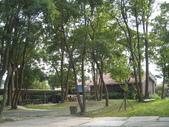 2008.10.25 桃園河岸森林:IMG_3185