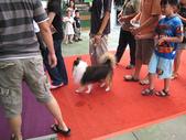 2008.07.27 台中寵物嘉年華:IMG_2002