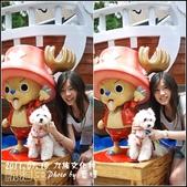 2011.07.10 九族文化村-航海王:ONE PICEC-21.jpg
