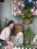 2009.06.03 紙箱王國 (東東芋圓):DSC00515.jpg
