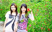 090419 三義油桐花在哪裡?:018.jpg