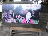 韓國釜山濟州遊:b050.JPG
