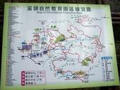 杉林溪頭嘉義遊:a56.JPG