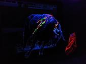 夜光3D藝術展:a17.jpg