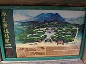 豬年新春環島行:Taiwan004
