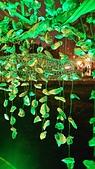 聚竹蚵地景藝術:k17.jpg