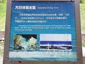 重遊綠島拼長泳:g080.jpg