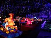 南投台灣燈會遊:n16.jpg